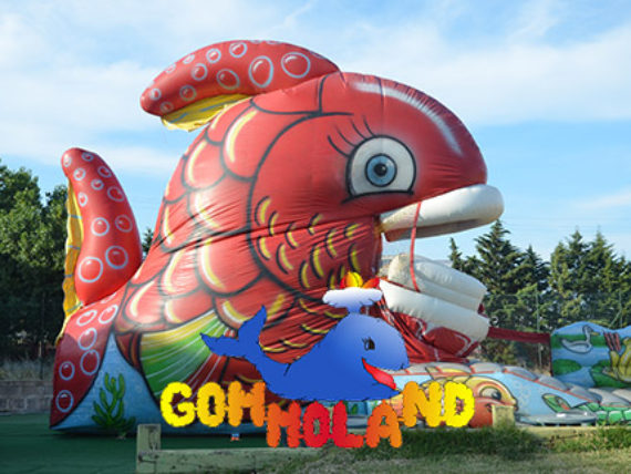 NUOVO-PORTFOLIO-gommoland-570x428 Italweb - Portfolio clienti