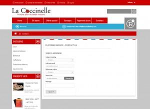 lacoccinelle-dettaglio2-300x218 lacoccinelle-dettaglio2